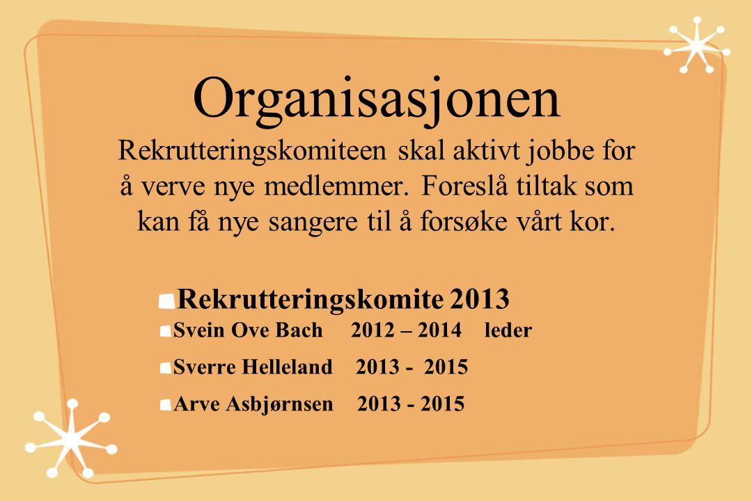 Organisasjonen Rekrutteringskomiteen skal aktivt jobbe for å verve nye medlemmer. Foreslå tiltak som kan få nye sangere til å forsøke vårt kor. Rekrut