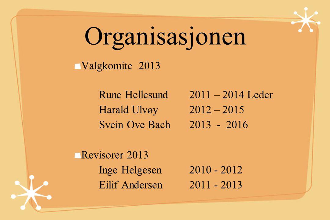 Organisasjonen Valgkomite 2013 Rune Hellesund 2011 – 2014 Leder Harald Ulvøy 2012 – 2015 Svein Ove Bach 2013 - 2016 Revisorer 2013 Inge Helgesen 2010