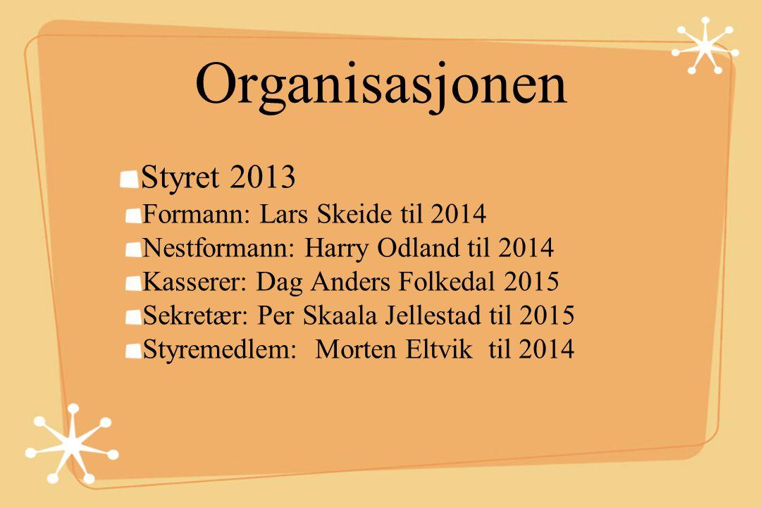 Organisasjonen Styret 2013 Formann: Lars Skeide til 2014 Nestformann: Harry Odland til 2014 Kasserer: Dag Anders Folkedal 2015 Sekretær: Per Skaala Je