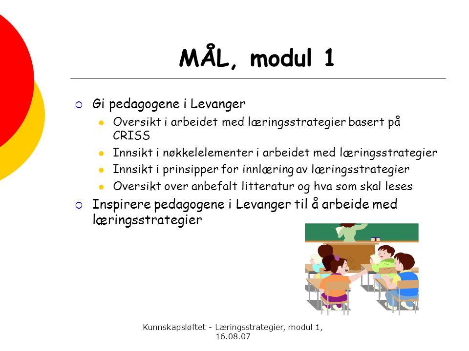 Kunnskapsløftet - Læringsstrategier, modul 1, 16.08.07 MÅL, modul 1  Gi pedagogene i Levanger  Oversikt i arbeidet med læringsstrategier basert på C