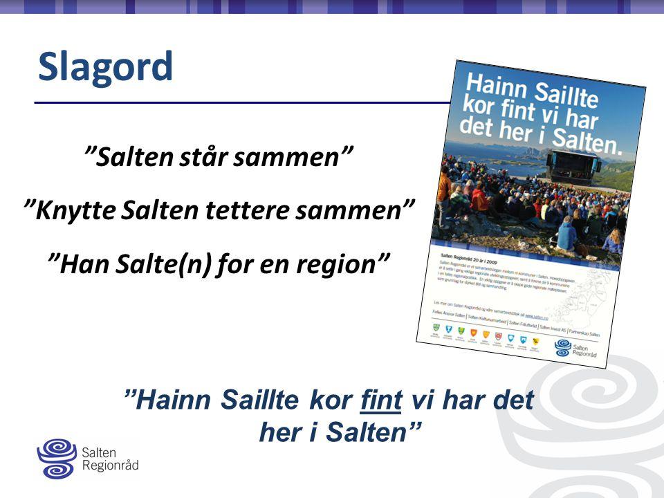 Salten står sammen Knytte Salten tettere sammen Han Salte(n) for en region Hainn Saillte kor fint vi har det her i Salten Slagord