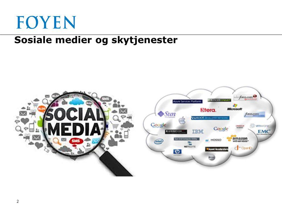 2 Sosiale medier og skytjenester