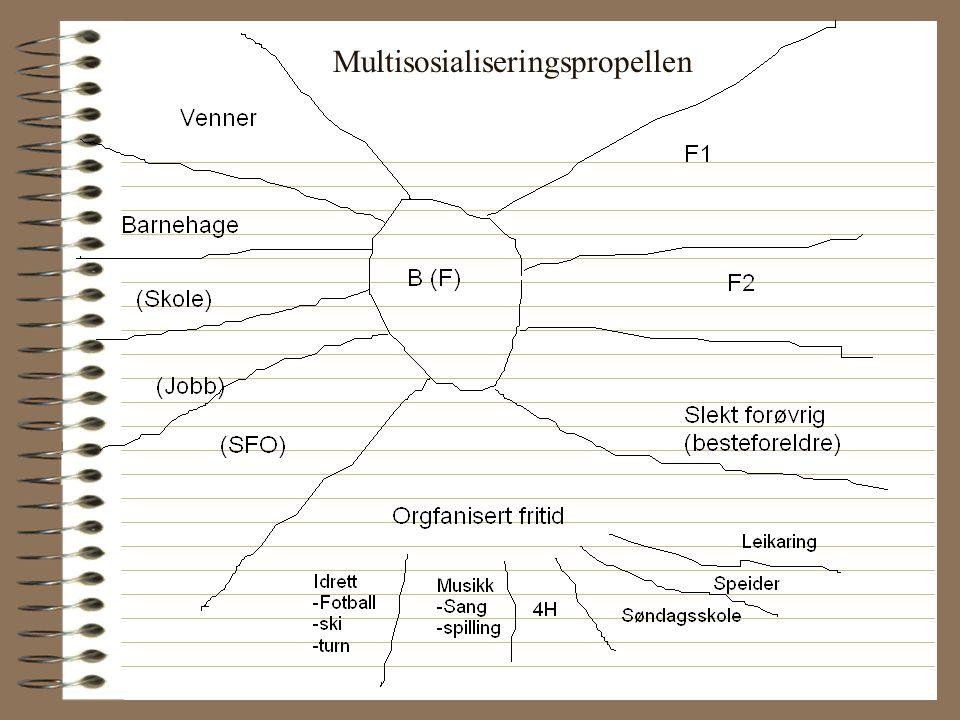 Multisosialiseringspropellen