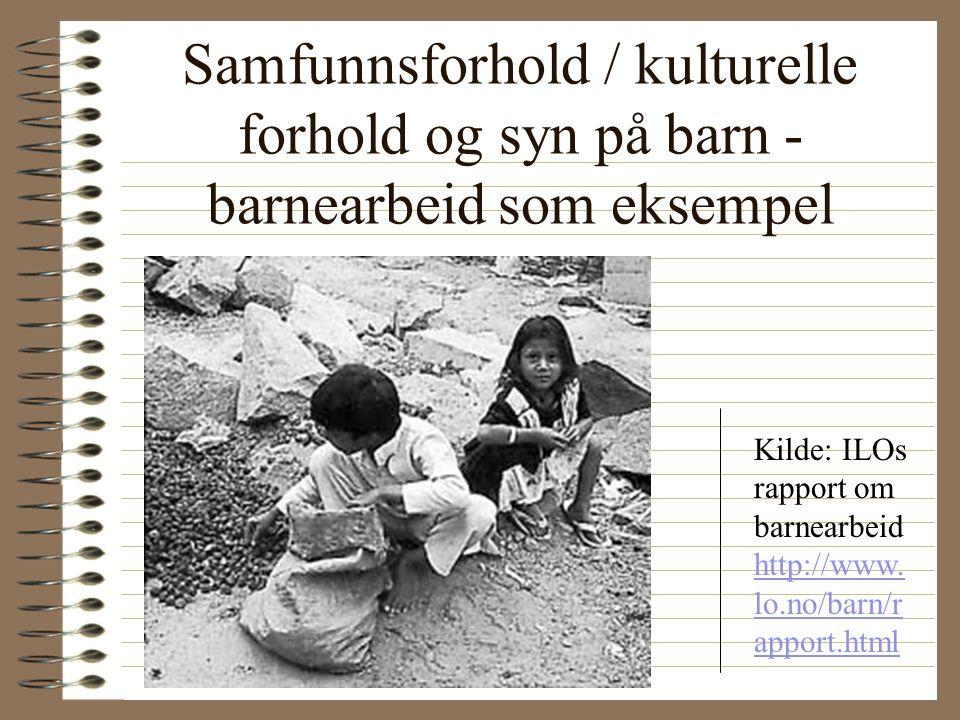 Basiskompetansebegrepet •Et mål med barnehagevirksomheten (Rammeplan for barnehager s. 36)