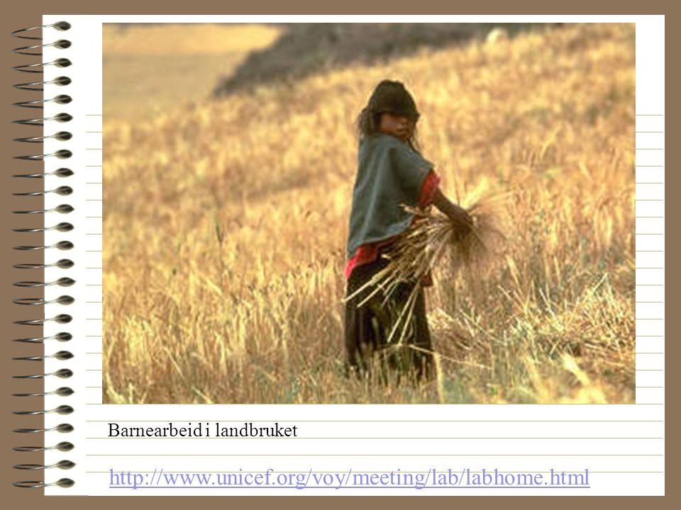 Samfunnsforhold / kulturelle forhold og syn på barn - barnearbeid som eksempel Kilde: ILOs rapport om barnearbeid http://www.