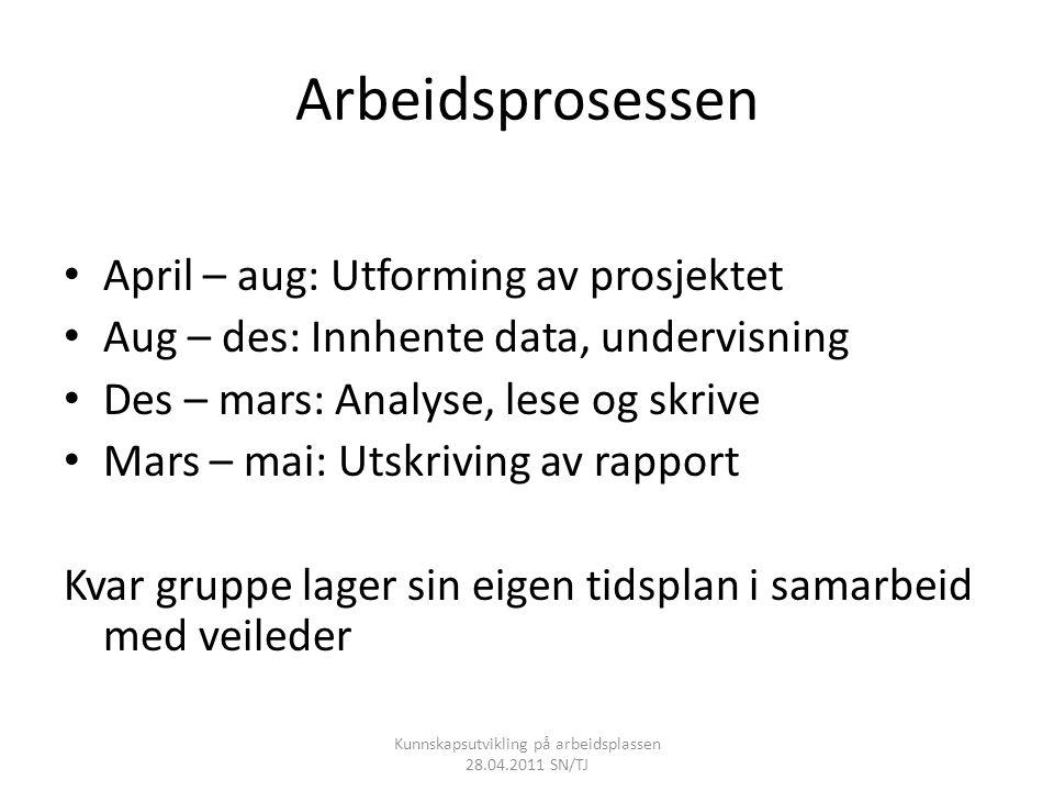 Arbeidsprosessen • April – aug: Utforming av prosjektet • Aug – des: Innhente data, undervisning • Des – mars: Analyse, lese og skrive • Mars – mai: U