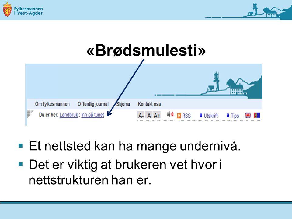«Brødsmulesti»  Et nettsted kan ha mange undernivå.  Det er viktig at brukeren vet hvor i nettstrukturen han er.