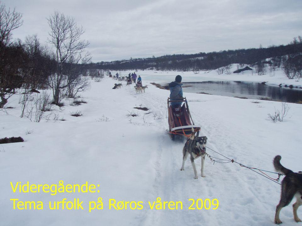 Toini Bergstrøm 090609 Videregående: Tema urfolk på Røros våren 2009
