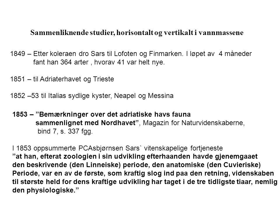 Sammenliknende studier, horisontalt og vertikalt i vannmassene 1849 – Etter koleraen dro Sars til Lofoten og Finmarken.