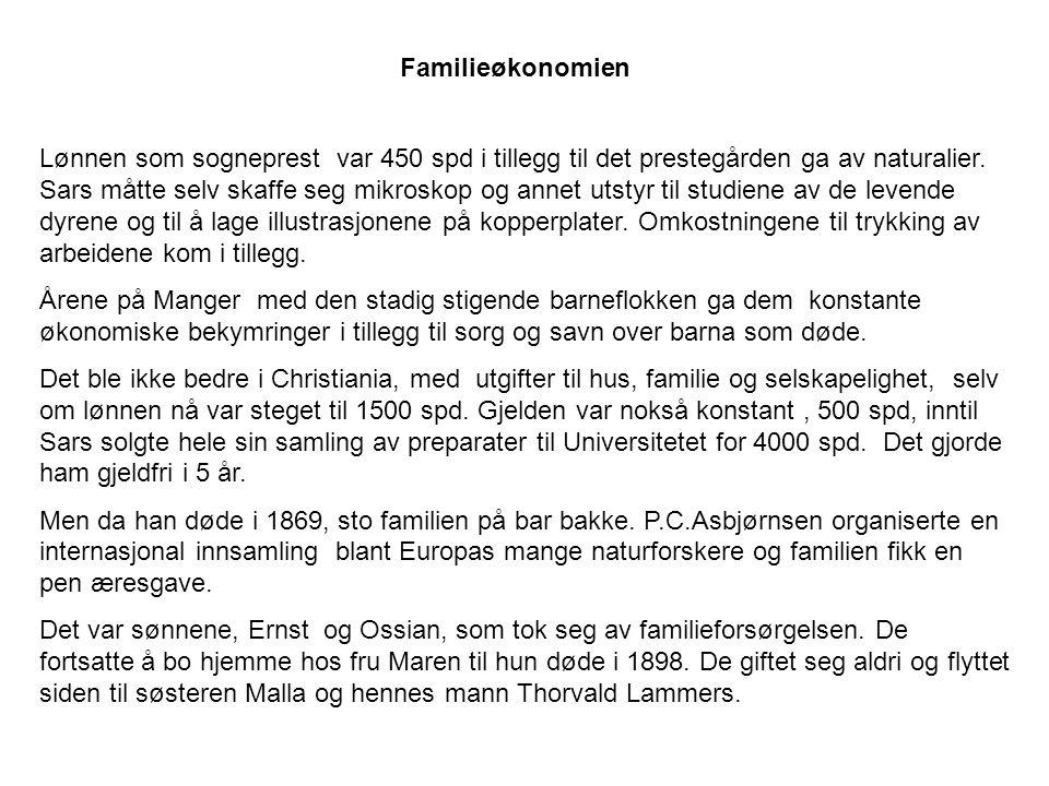 Familieøkonomien Lønnen som sogneprest var 450 spd i tillegg til det prestegården ga av naturalier.