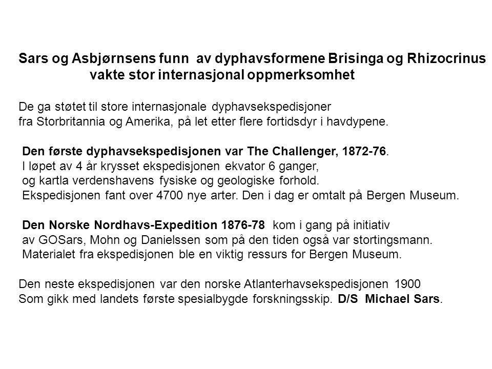 Sars og Asbjørnsens funn av dyphavsformene Brisinga og Rhizocrinus vakte stor internasjonal oppmerksomhet De ga støtet til store internasjonale dyphavsekspedisjoner fra Storbritannia og Amerika, på let etter flere fortidsdyr i havdypene.
