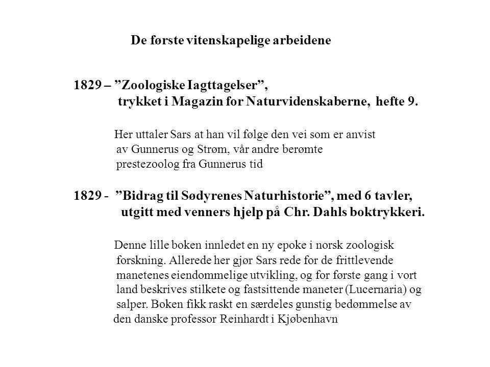"""De første vitenskapelige arbeidene 1829 – """"Zoologiske Iagttagelser"""", trykket i Magazin for Naturvidenskaberne, hefte 9. Her uttaler Sars at han vil fø"""