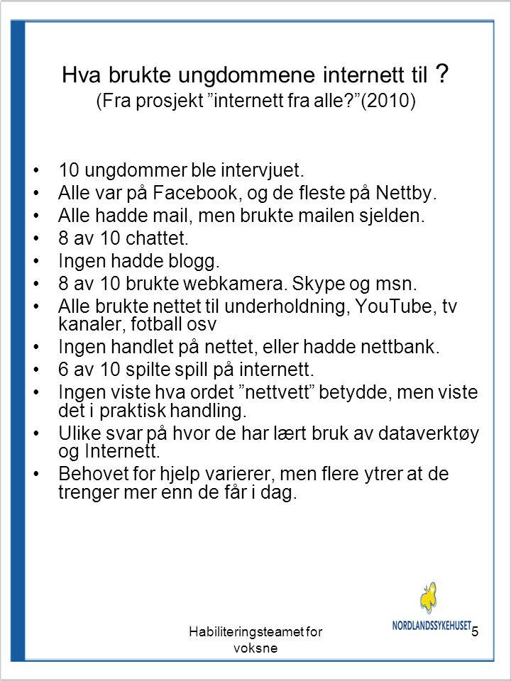 Habiliteringsteamet for voksne 5 Hva brukte ungdommene internett til .