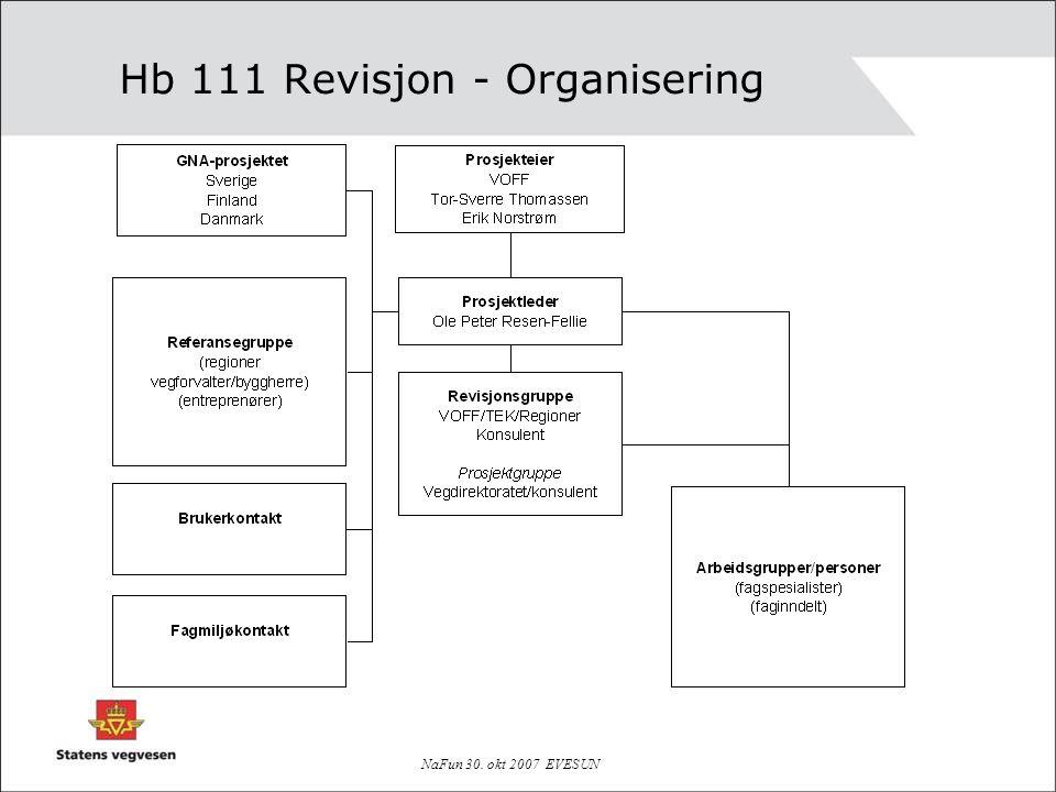 NaFun 30. okt 2007 EVESUN Hb 111 Revisjon - Organisering