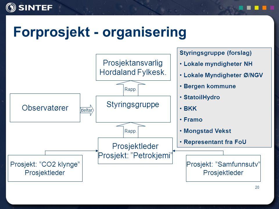 20 Forprosjekt - organisering Prosjektansvarlig Hordaland Fylkesk.