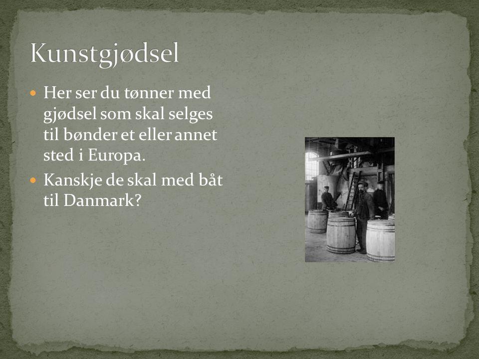  Fabrikkbygningene på Notodden (1907).  Her skulle det produseres kunstgjødsel