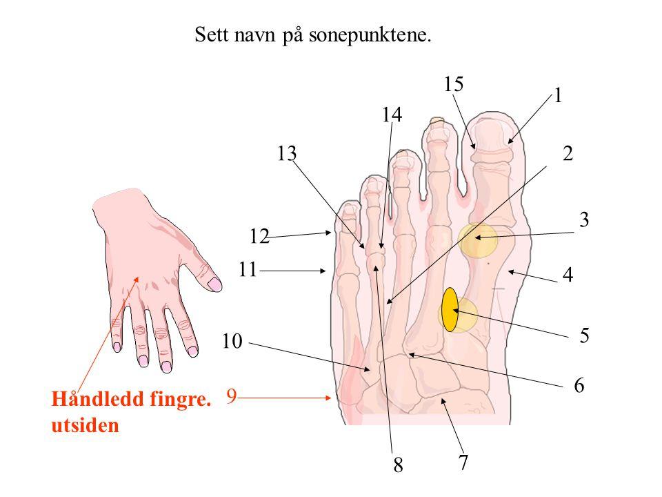 Sett navn på sonepunktene. 1 2 3 4 5 6 7 8 9 10 11 12 13 14 15 Håndledd fingre. utsiden