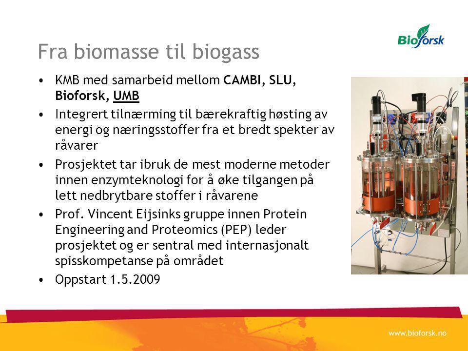 Fra biomasse til biogass •KMB med samarbeid mellom CAMBI, SLU, Bioforsk, UMB •Integrert tilnærming til bærekraftig høsting av energi og næringsstoffer fra et bredt spekter av råvarer •Prosjektet tar ibruk de mest moderne metoder innen enzymteknologi for å øke tilgangen på lett nedbrytbare stoffer i råvarene •Prof.