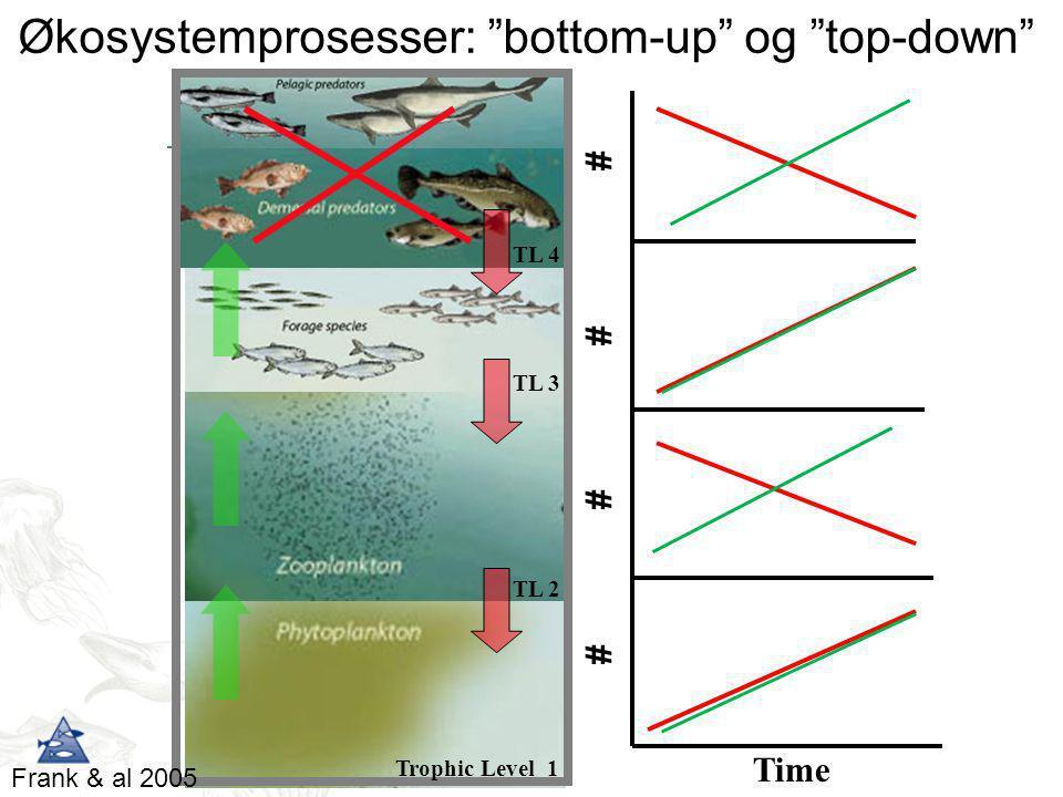 """# ## # Time TL 4 TL 3 TL 2 Trophic Level 1 Økosystemprosesser: """"bottom-up"""" og """"top-down"""" Frank & al 2005"""