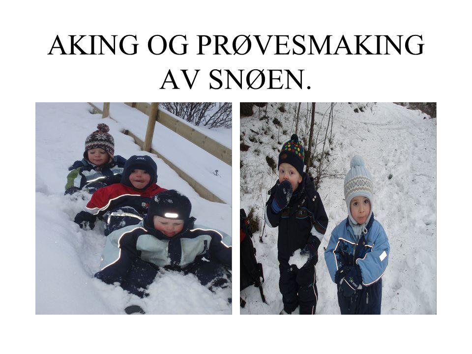 AKING OG PRØVESMAKING AV SNØEN.