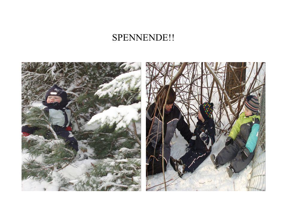 SPENNENDE!!