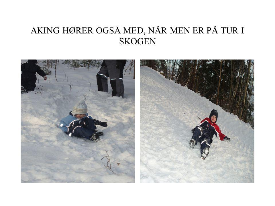 AKING HØRER OGSÅ MED, NÅR MEN ER PÅ TUR I SKOGEN