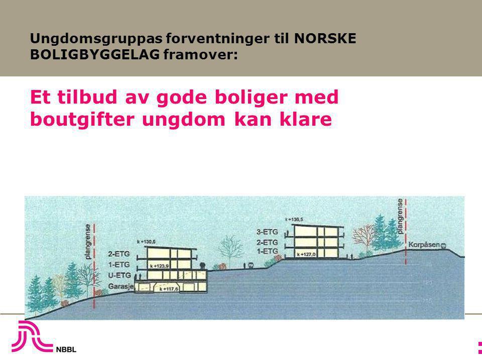 Ungdomsgruppas forventninger til NORSKE BOLIGBYGGELAG framover: Et tilbud av gode boliger med boutgifter ungdom kan klare