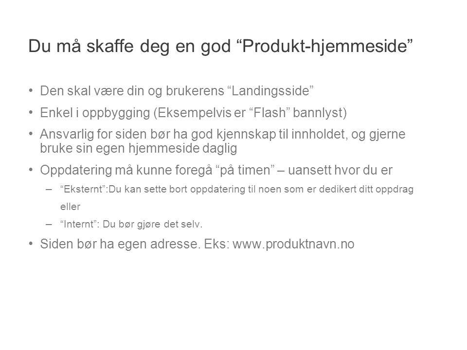 """Du må skaffe deg en god """"Produkt-hjemmeside"""" • Den skal være din og brukerens """"Landingsside"""" • Enkel i oppbygging (Eksempelvis er """"Flash"""" bannlyst) •"""