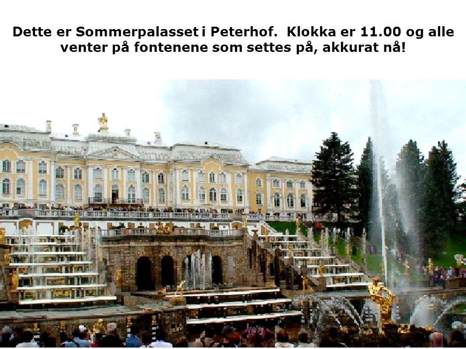 Dette er Sommerpalasset i Peterhof.