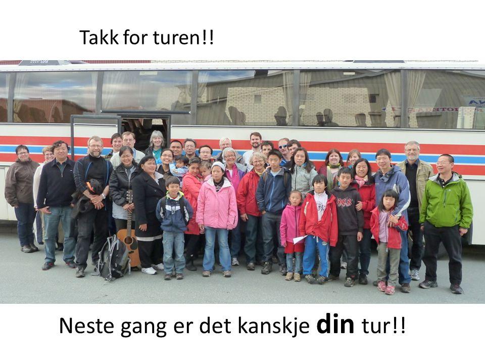 Vel hjemme i Trondheim
