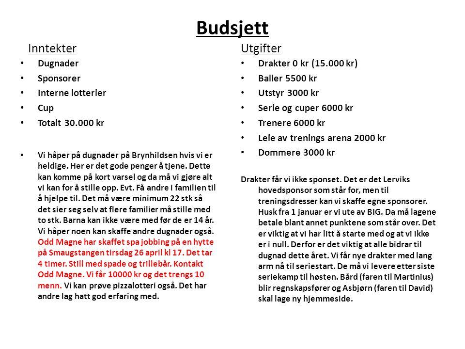 Budsjett Inntekter • Dugnader • Sponsorer • Interne lotterier • Cup • Totalt 30.000 kr • Vi håper på dugnader på Brynhildsen hvis vi er heldige.
