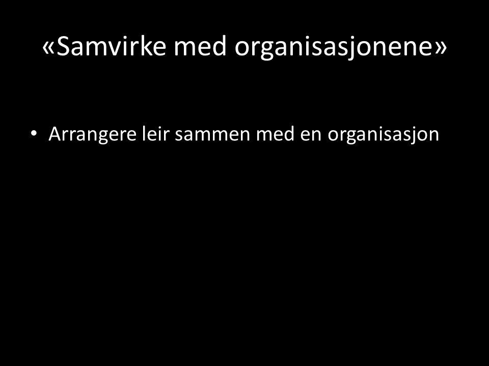 «Samvirke med organisasjonene» • Arrangere leir sammen med en organisasjon