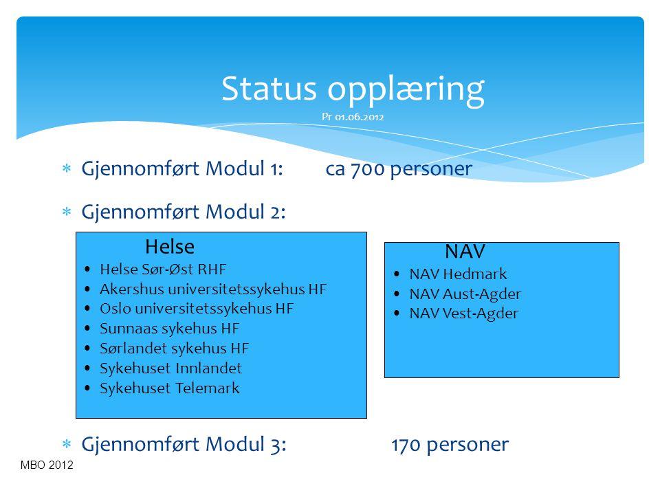 Status opplæring Pr 01.06.2012  Gjennomført Modul 1: ca 700 personer  Gjennomført Modul 2:  Gjennomført Modul 3:170 personer NAV • NAV Hedmark • NA