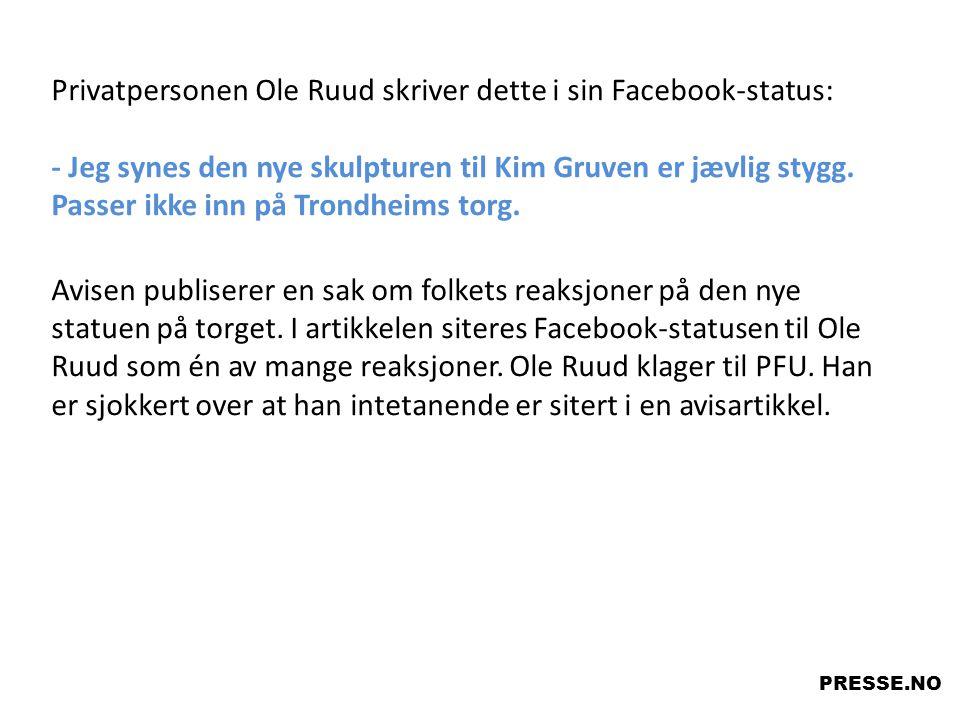 Privatpersonen Ole Ruud skriver dette i sin Facebook-status: - Jeg synes den nye skulpturen til Kim Gruven er jævlig stygg. Passer ikke inn på Trondhe