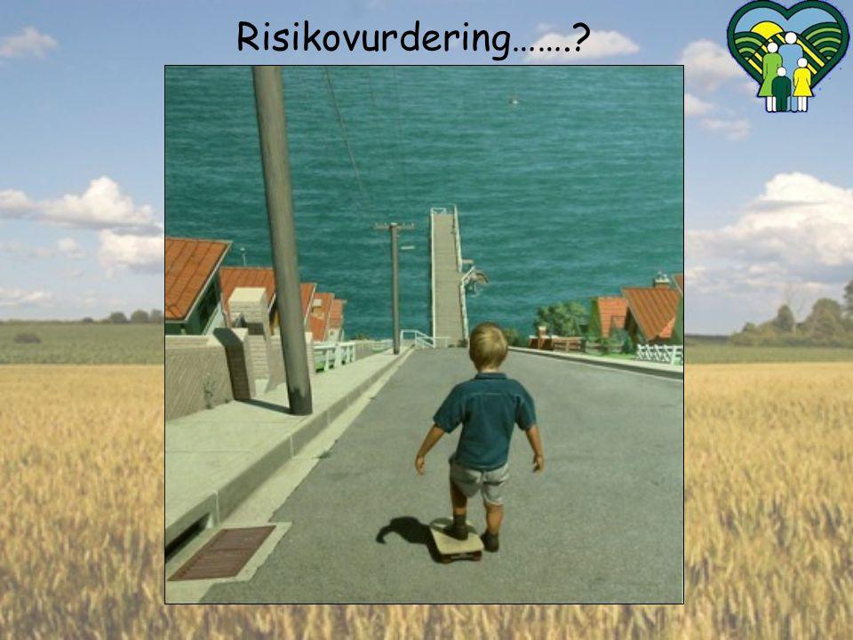 - vi gir trygghet og overskudd- Risikovurdering…….?