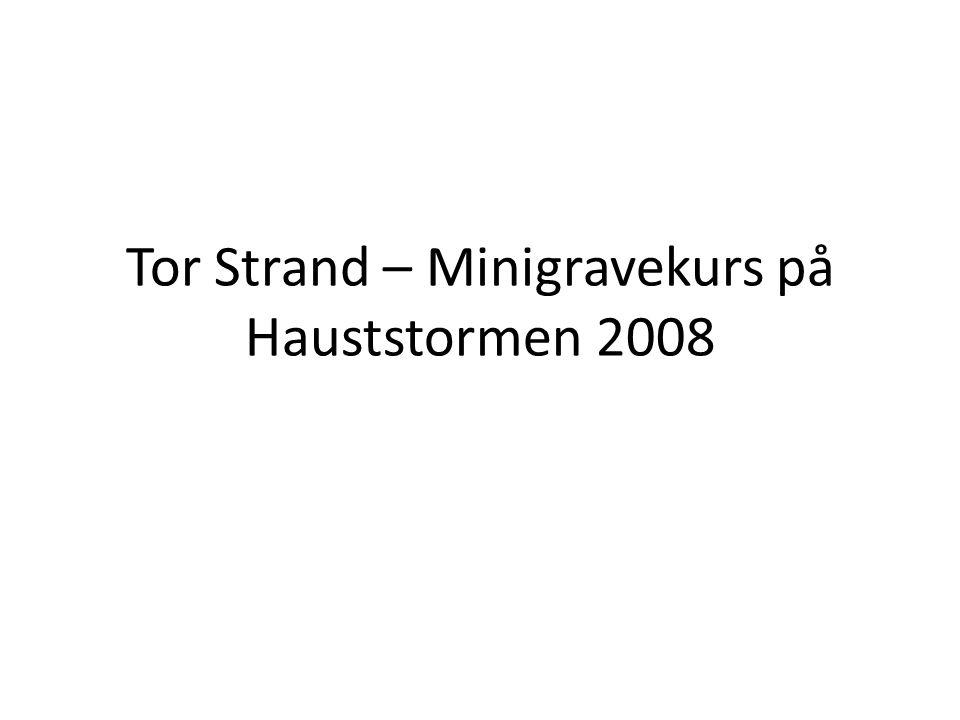 Tor Strand – Minigravekurs på Hauststormen 2008