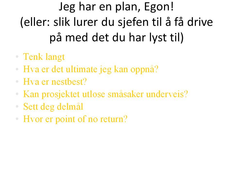 Jeg har en plan, Egon! (eller: slik lurer du sjefen til å få drive på med det du har lyst til)