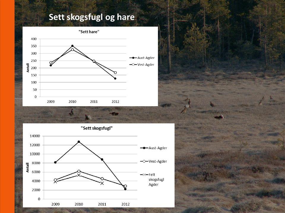 www.fnat.no Sett skogsfugl og hare