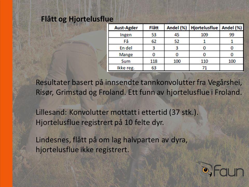 www.fnat.no Flått og Hjortelusflue Resultater basert på innsendte tannkonvolutter fra Vegårshei, Risør, Grimstad og Froland.