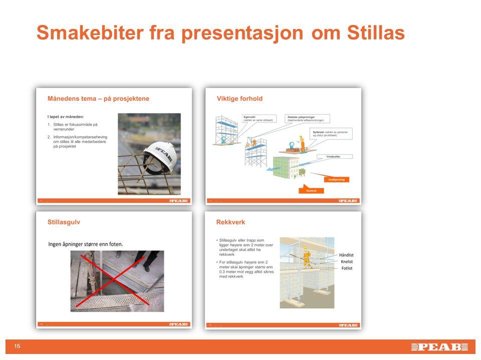 Smakebiter fra presentasjon om Stillas 15