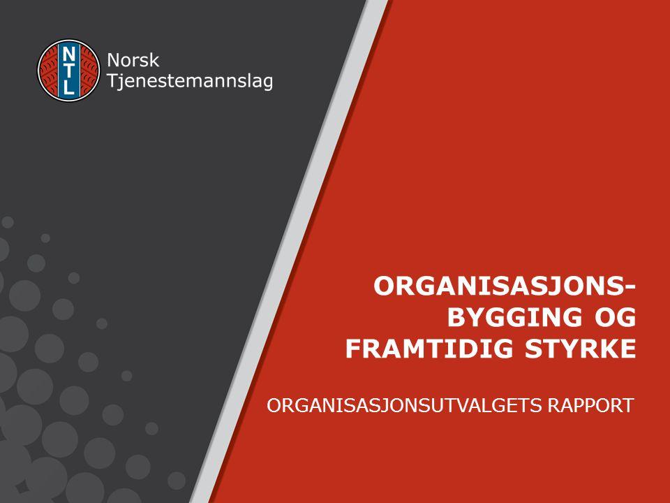 ORGANISASJONSUTVALGETS RAPPORT ORGANISASJONS- BYGGING OG FRAMTIDIG STYRKE
