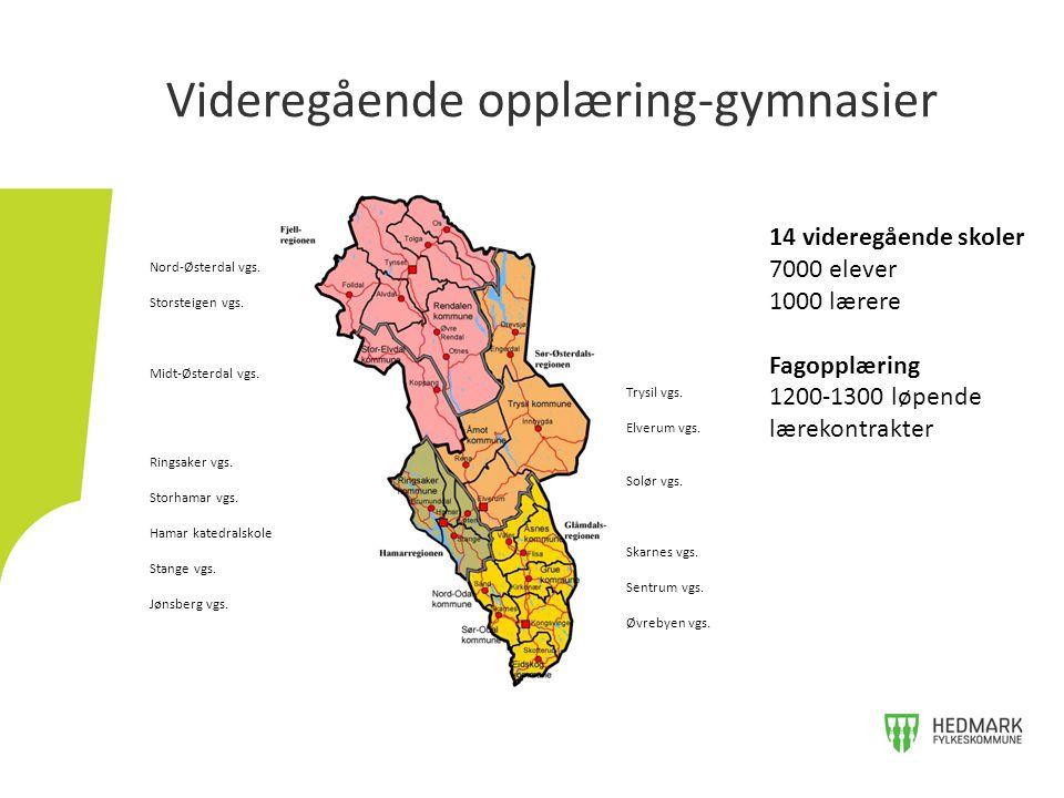 Videregående opplæring-gymnasier 14 videregående skoler 7000 elever 1000 lærere Fagopplæring 1200-1300 løpende lærekontrakter Nord-Østerdal vgs. Stors