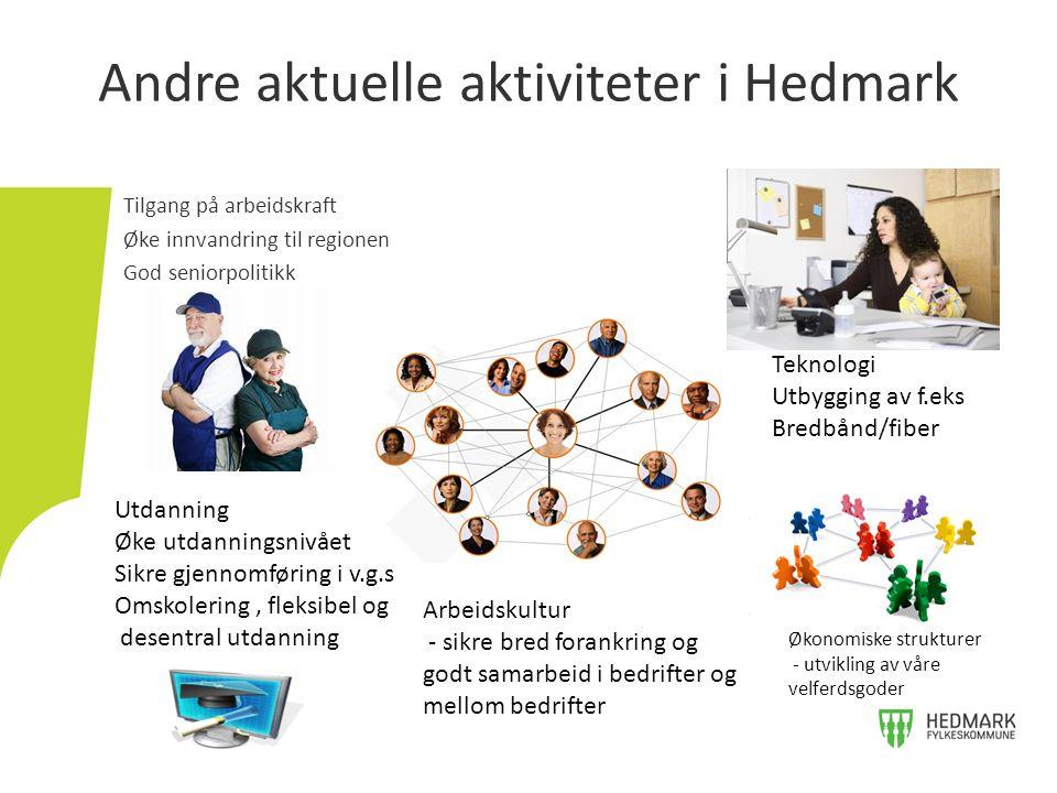 Tilgang på arbeidskraft Øke innvandring til regionen God seniorpolitikk Andre aktuelle aktiviteter i Hedmark Utdanning Øke utdanningsnivået Sikre gjen