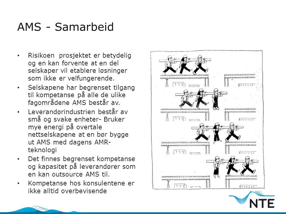 AMS - Samarbeid • Risikoen prosjektet er betydelig og en kan forvente at en del selskaper vil etablere løsninger som ikke er velfungerende. • Selskape