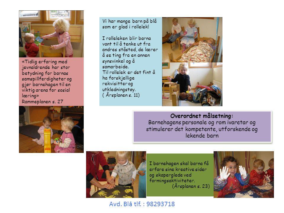 Barnehagen skal gi barna ulike typer utfordringer de mestrer, og introdusere dem for nye måter å bruke kroppen sin på.