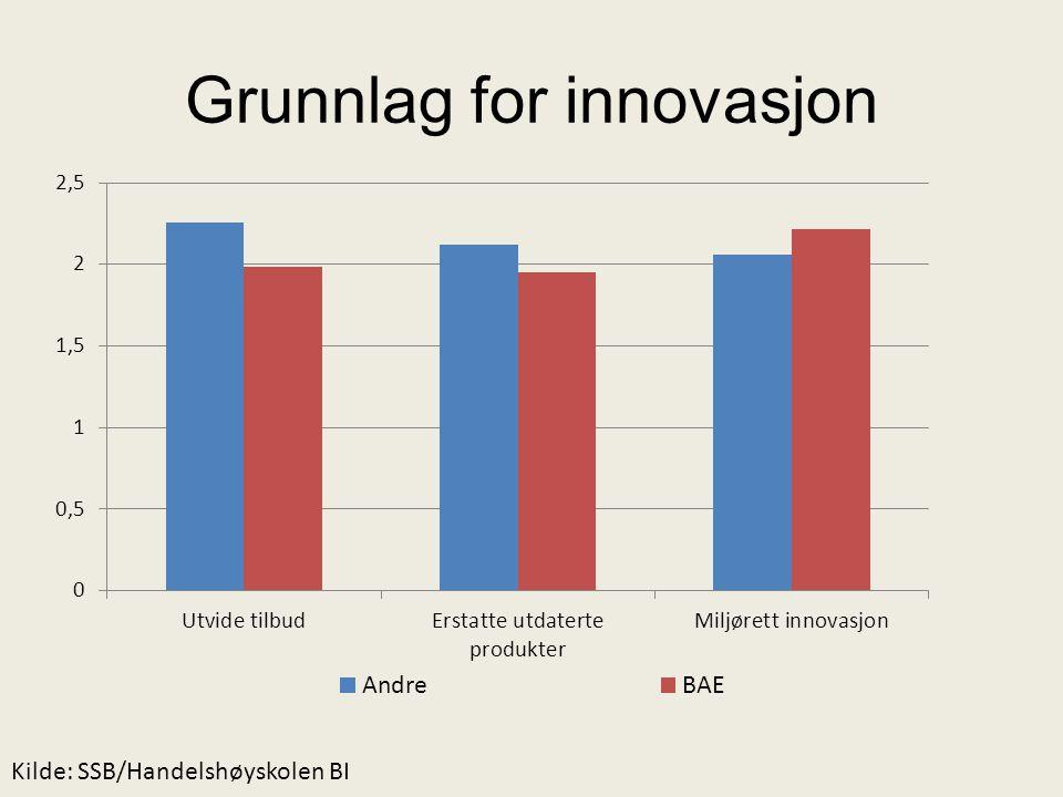 Grunnlag for innovasjon Kilde: SSB/Handelshøyskolen BI