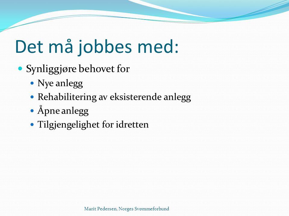 Marit Pedersen, Norges Svømmeforbund Det må jobbes med:  Synliggjøre behovet for  Nye anlegg  Rehabilitering av eksisterende anlegg  Åpne anlegg 