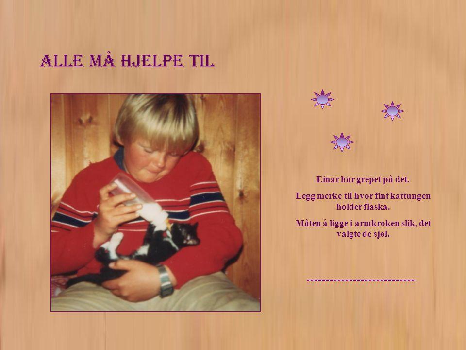 Alle må hjelpe til Einar har grepet på det. Legg merke til hvor fint kattungen holder flaska.