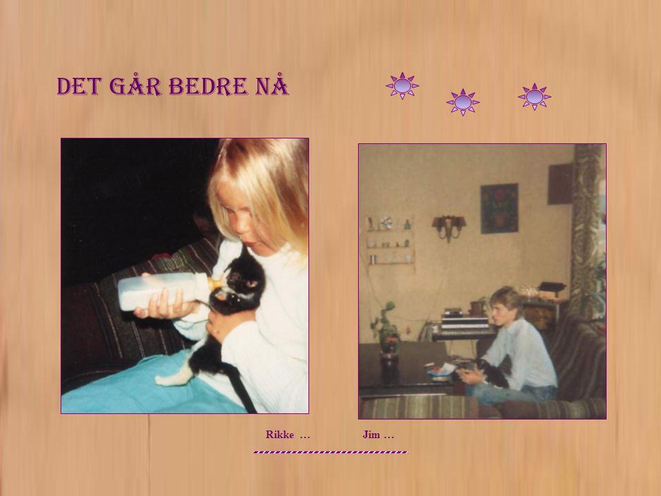 Ingeborg 2003 Og Vi Haster Videre Til Nye Prosjekt