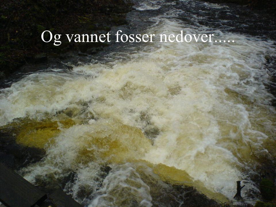 Og vannet fosser nedover.....